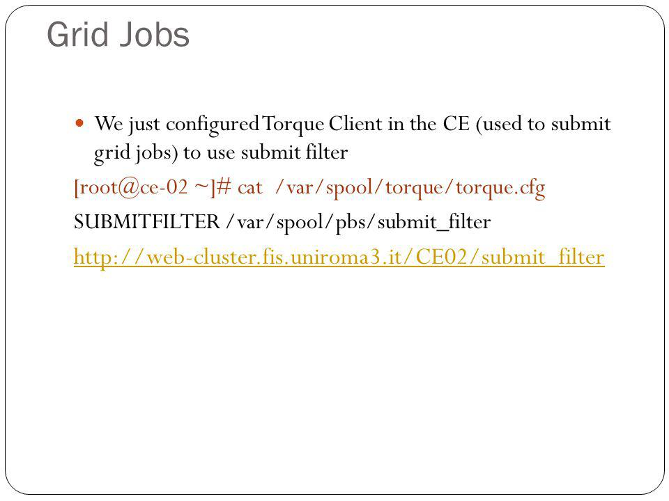 Grid Jobs We just configured Torque Client in the CE (used to submit grid jobs) to use submit filter [root@ce-02 ~]# cat /var/spool/torque/torque.cfg SUBMITFILTER /var/spool/pbs/submit_filter http://web-cluster.fis.uniroma3.it/CE02/submit_filter