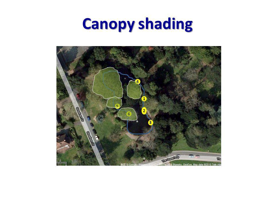 Canopy shading 1 2 3 4 6 5