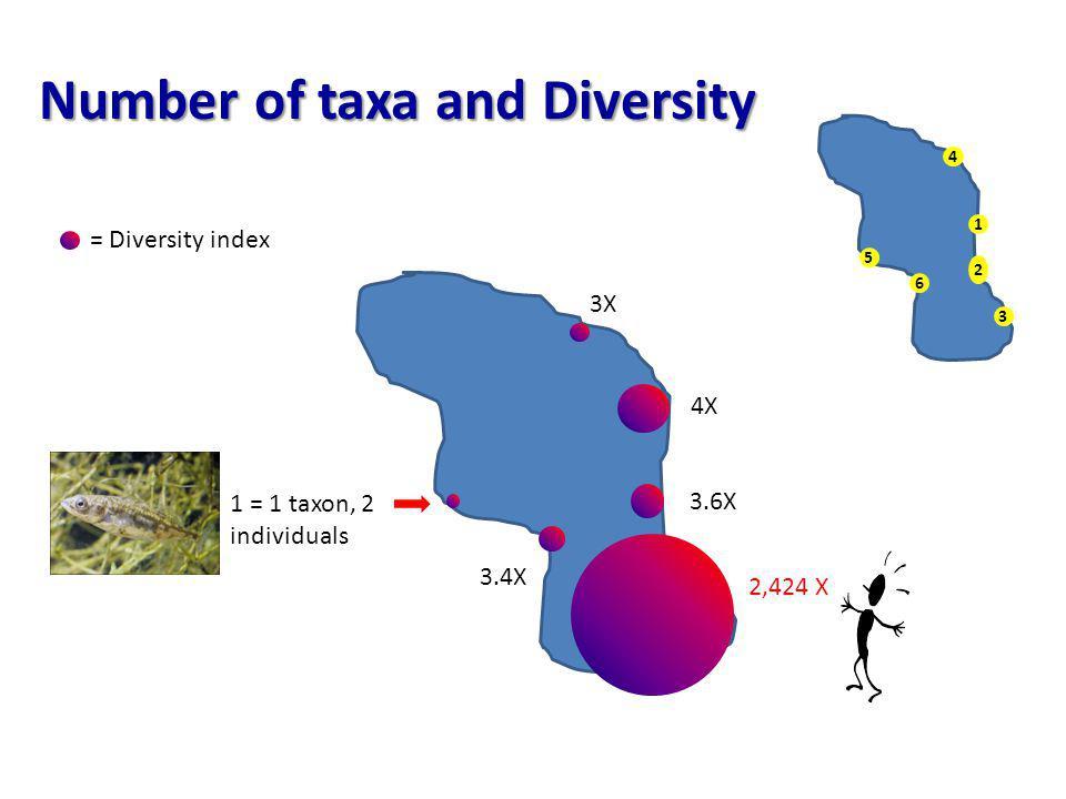 Number of taxa and Diversity 3.4X 3X 3.6X 4X 2,424 X 1 = 1 taxon, 2 individuals 1 2 3 4 6 5 = Diversity index