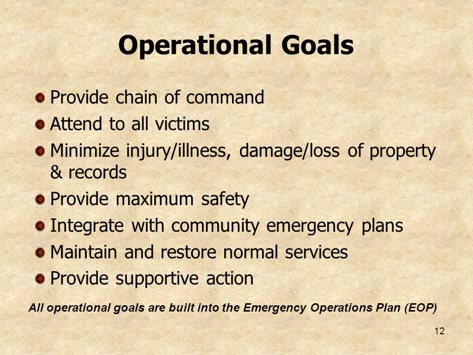 12 Operational Goals Provide chain of command Attend to all victims Minimize injury/illness, damage/loss of property & records Provide maximum safety