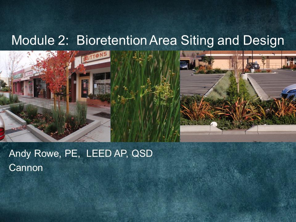 Bioretention Constraints Impermeable Soils Groundwater Pollution or Contaminated Soils High Groundwater Impervious Soil Layer Vector Issues Geotechnical Instability Steep Slopes Coastal Bluffs When should an underdrain be used?