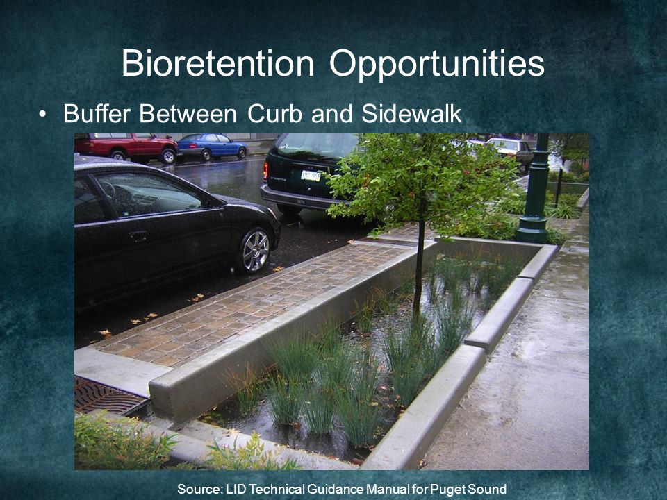 Bioretention Opportunities Buffer Between Curb and Sidewalk Source: LID Technical Guidance Manual for Puget Sound
