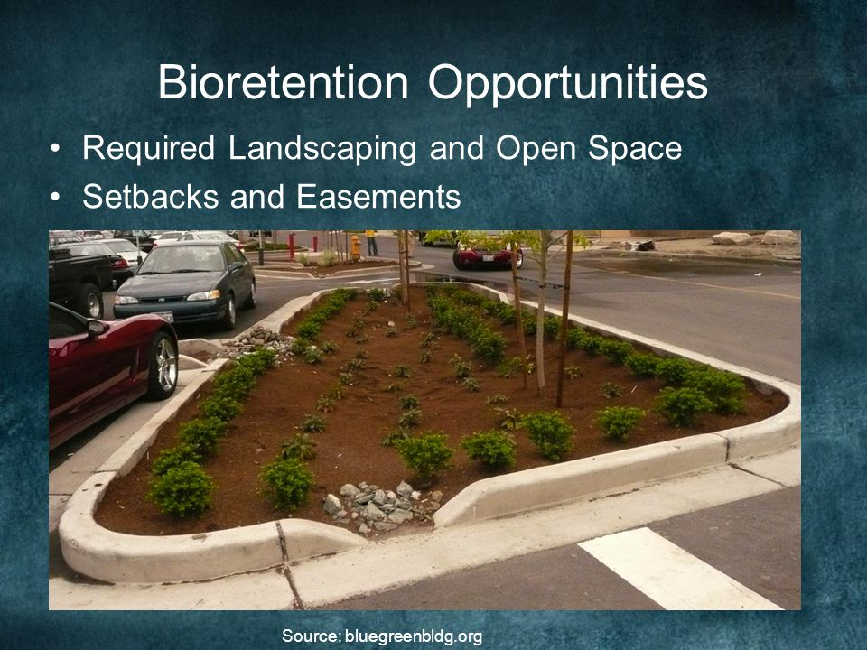 Bioretention Opportunities Required Landscaping and Open Space Setbacks and Easements Source: bluegreenbldg.org