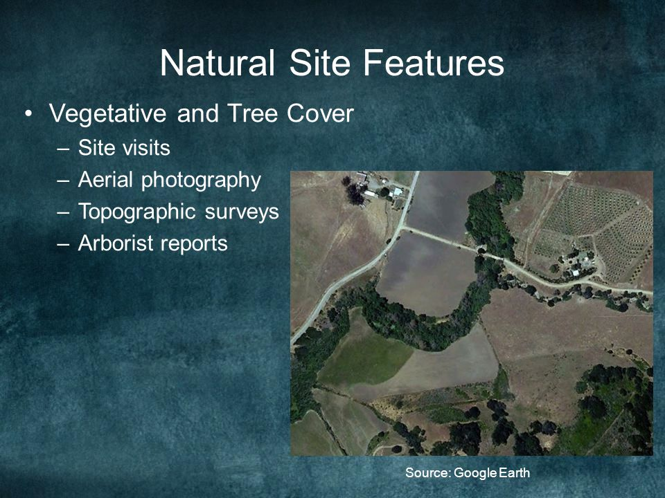 Natural Site Features Vegetative and Tree Cover –Site visits –Aerial photography –Topographic surveys –Arborist reports Source: Google Earth