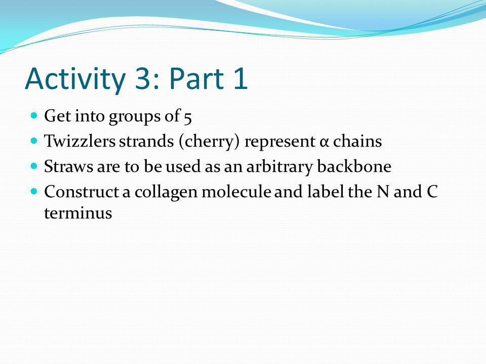 Activity 3: Part 1 Get into groups of 5 Twizzlers strands (cherry) represent α chains Straws are to be used as an arbitrary backbone Construct a colla