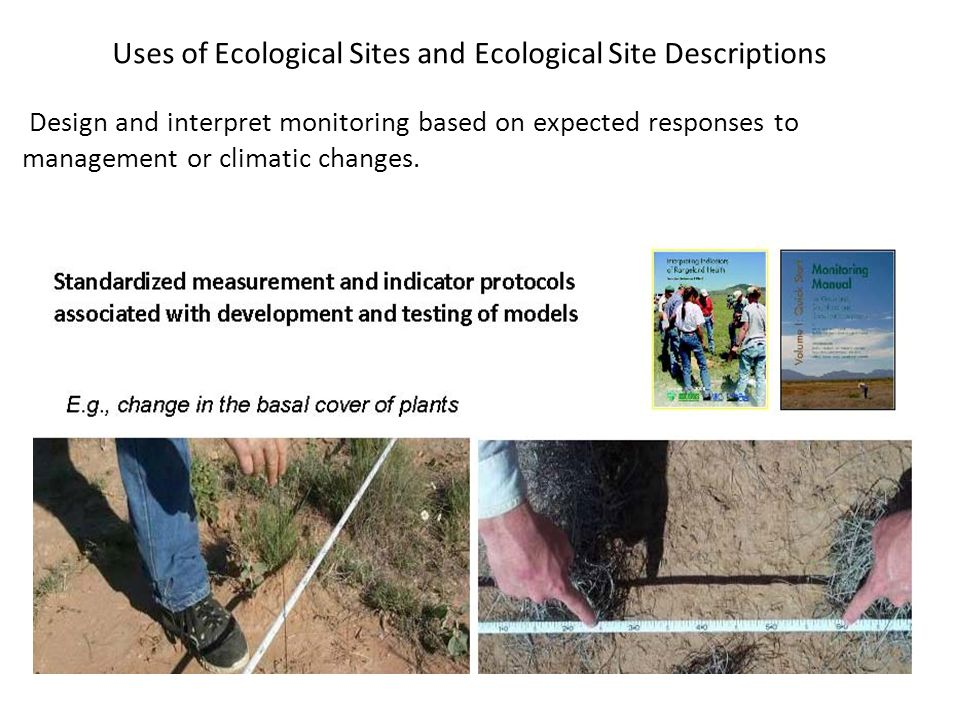 Design and interpret monitoring based on expected responses to management or climatic changes. Uses of Ecological Sites and Ecological Site Descriptio
