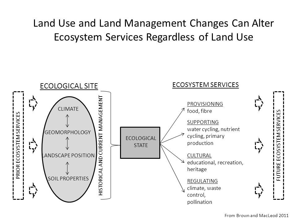 ECOLOGICAL STATE ECOLOGICAL SITE CLIMATE SOIL PROPERTIES LANDSCAPE POSITION GEOMORPHOLOGY ECOSYSTEM SERVICES PROVISIONING food, fibre SUPPORTING water cycling, nutrient cycling, primary production CULTURAL educational, recreation, heritage REGULATING climate, waste control, pollination HISTORICAL AND CURRENT MANAGEMENT PRIOR ECOSYSTEM SERVICESFUTURE ECOSYSTEM SERVICES From Brown and MacLeod 2011 Land Use and Land Management Changes Can Alter Ecosystem Services Regardless of Land Use