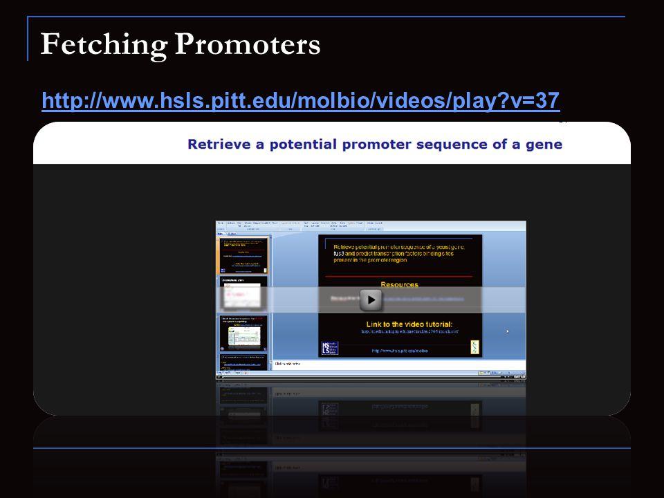 Fetching Promoters http://www.hsls.pitt.edu/molbio/videos/play?v=37