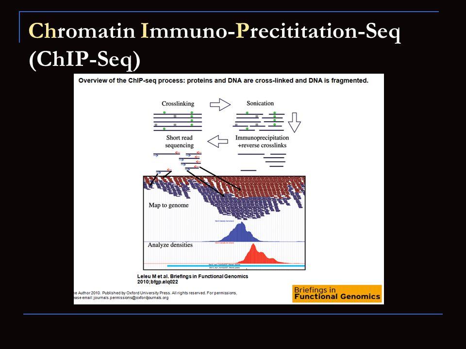 Chromatin Immuno-Precititation-Seq (ChIP-Seq)