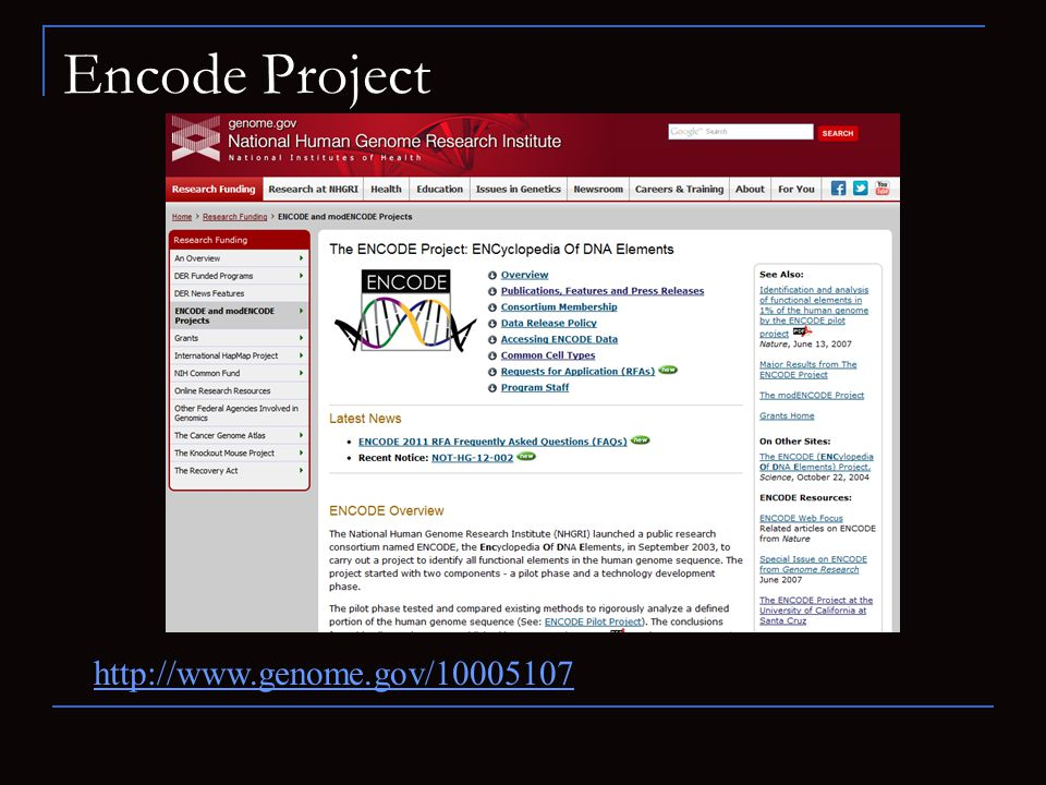 Encode Project http://www.genome.gov/10005107