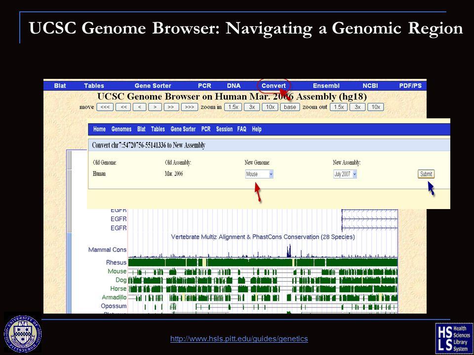 UCSC Genome Browser: Navigating a Genomic Region http://www.hsls.pitt.edu/guides/genetics