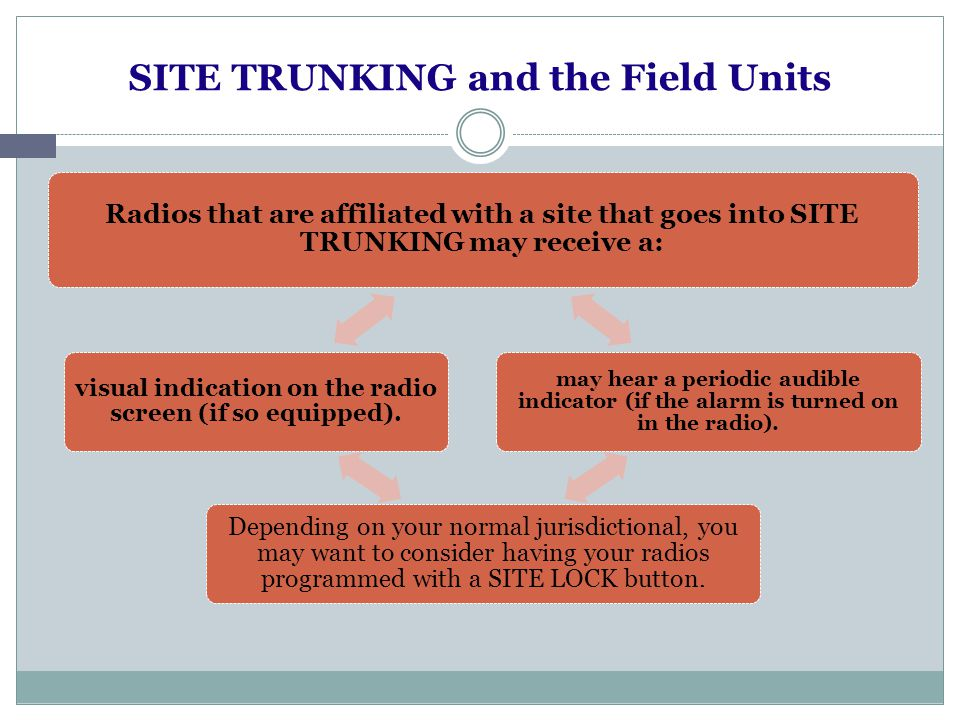 Your SITE TRUNKING plan.
