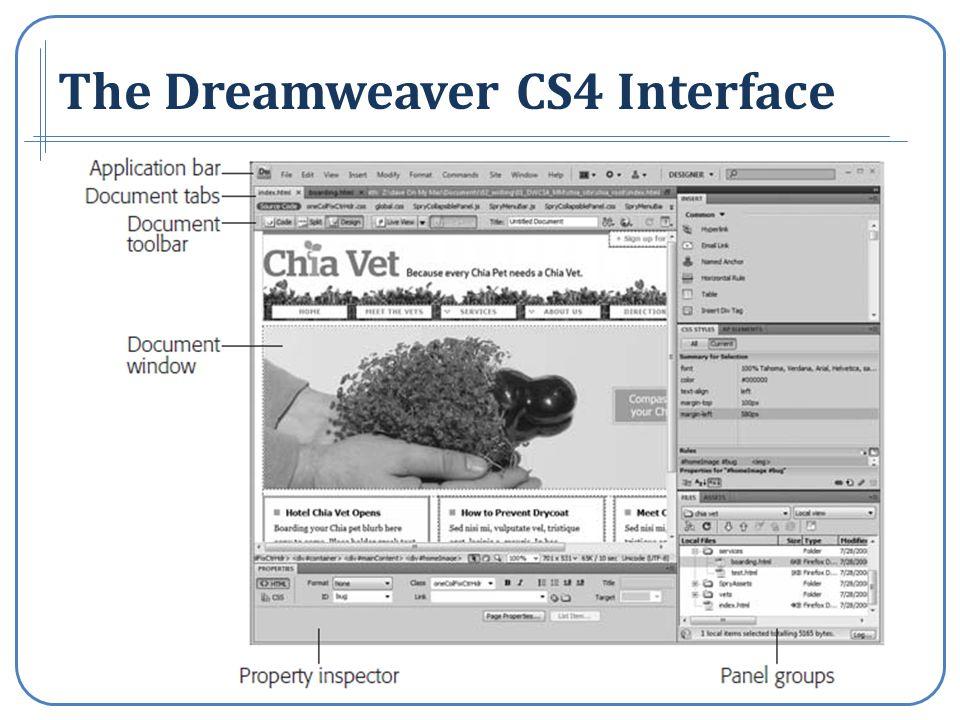 The Dreamweaver CS4 Interface
