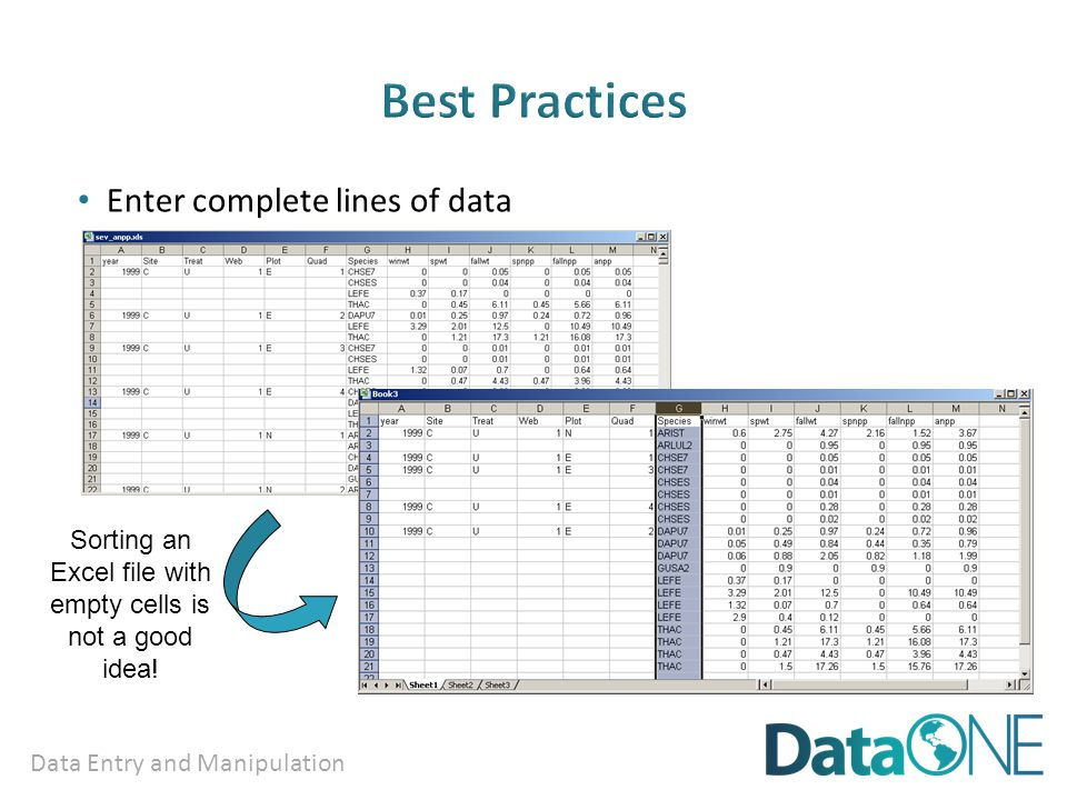 Data Entry and Manipulation Enter complete lines of data Sorting an Excel file with empty cells is not a good idea!