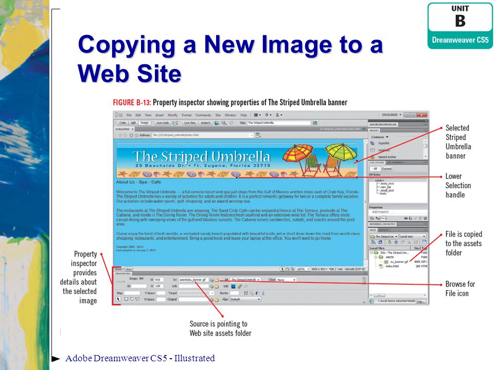Copying a New Image to a Web Site Adobe Dreamweaver CS5 - Illustrated
