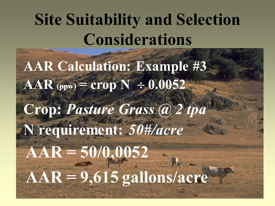 Site Suitability and Selection Considerations AAR Calculation: Example #3 AAR (ppw) = crop N 0.0052 Crop: Pasture Grass @ 2 tpa AAR = 50/0.0052 N requ