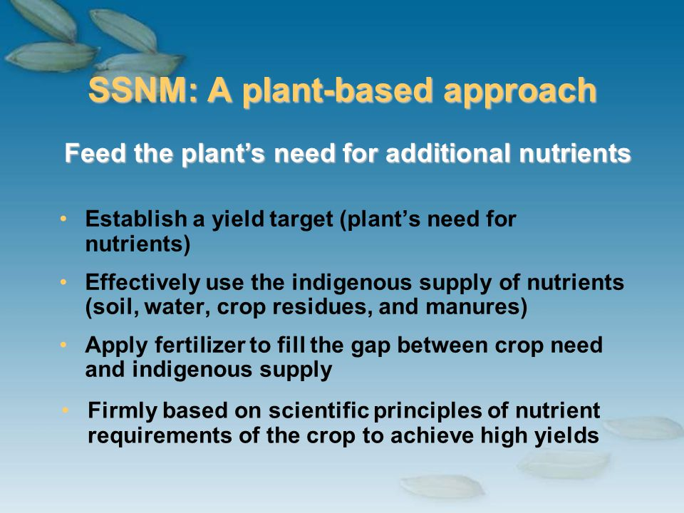 SSNM: A plant-based approach Establish a yield target (plants need for nutrients) Effectively use the indigenous supply of nutrients (soil, water, cro
