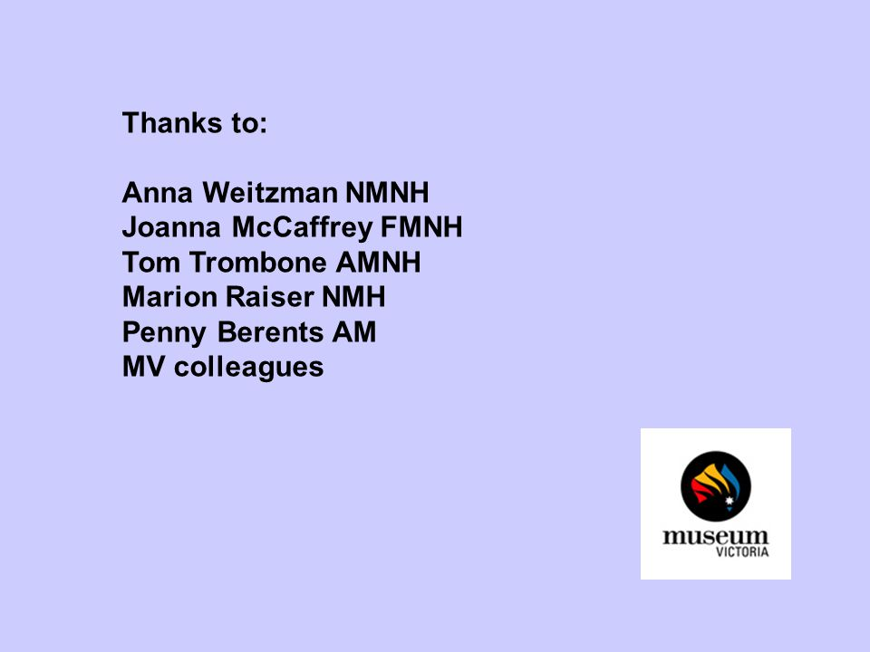 Thanks to: Anna Weitzman NMNH Joanna McCaffrey FMNH Tom Trombone AMNH Marion Raiser NMH Penny Berents AM MV colleagues