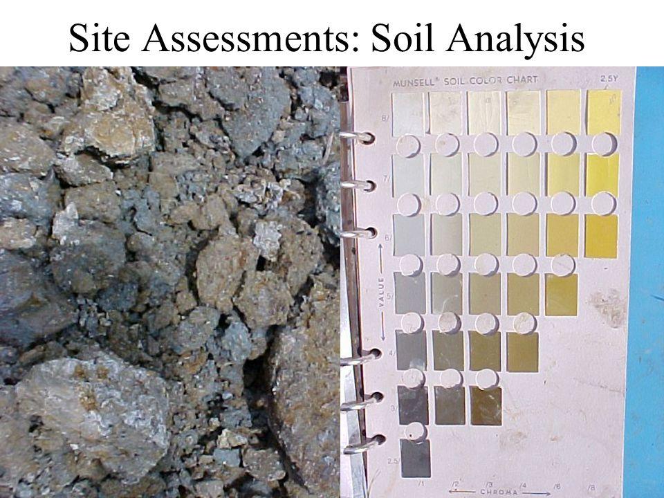 Site Assessments: Soil Analysis