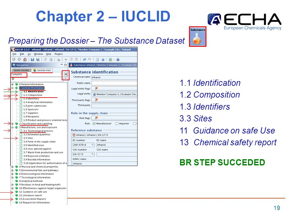 19 Chapter 2 – IUCLID Preparing the Dossier – The Substance Dataset 1.1 Identification 1.2 Composition 1.3 Identifiers 3.3 Sites 11 Guidance on safe Use 13 Chemical safety report BR STEP SUCCEDED
