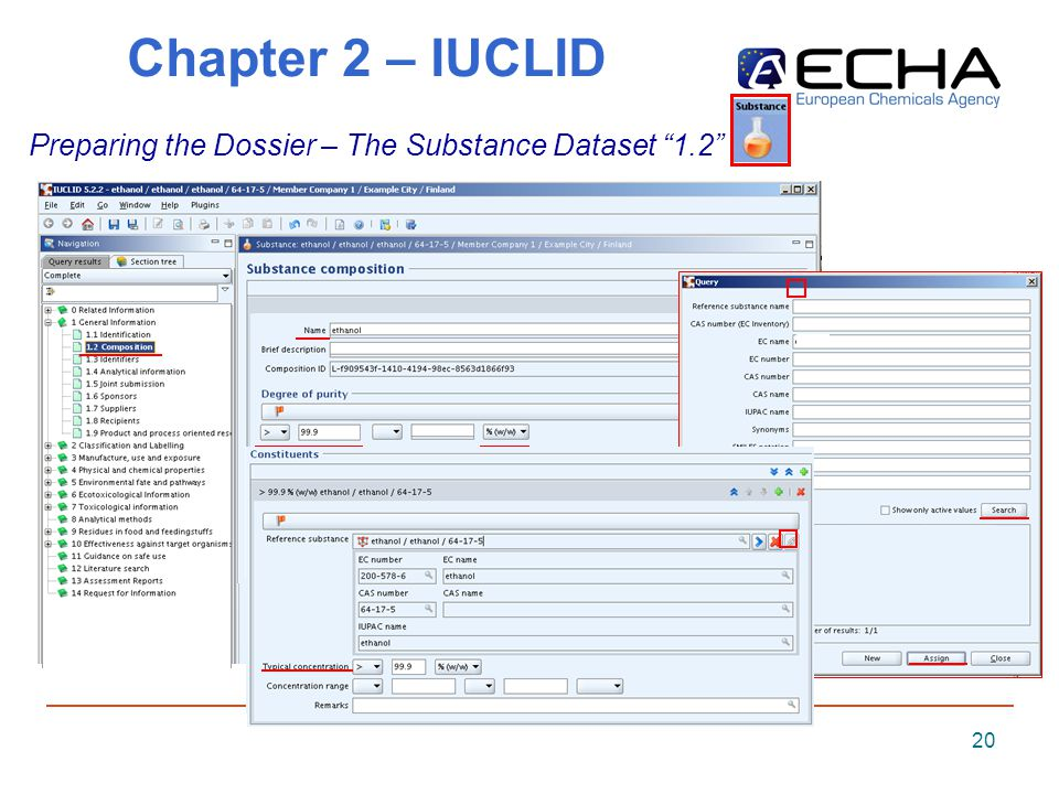 20 Chapter 2 – IUCLID Preparing the Dossier – The Substance Dataset 1.2
