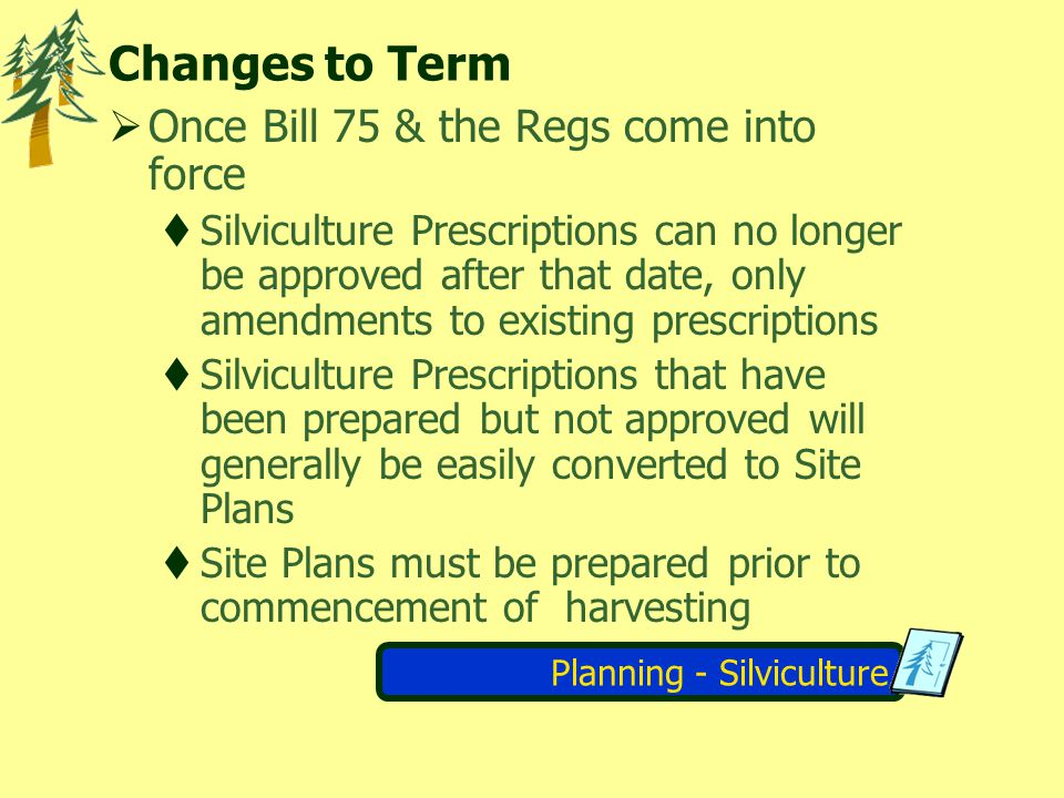 Planning - Silviculture Changes to Term Once Bill 75 & the Regs come into force Silviculture Prescriptions can no longer be approved after that date,