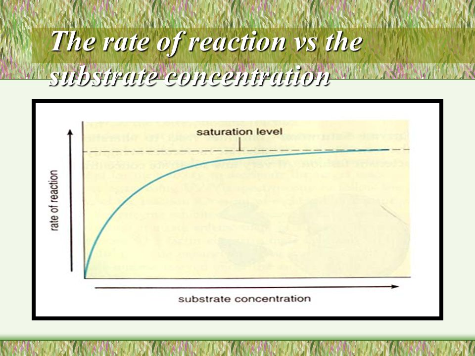 Substrate concentrate Increasing the substrate concentration at the suitable enzyme concentration, the reaction rate will be increased because of more