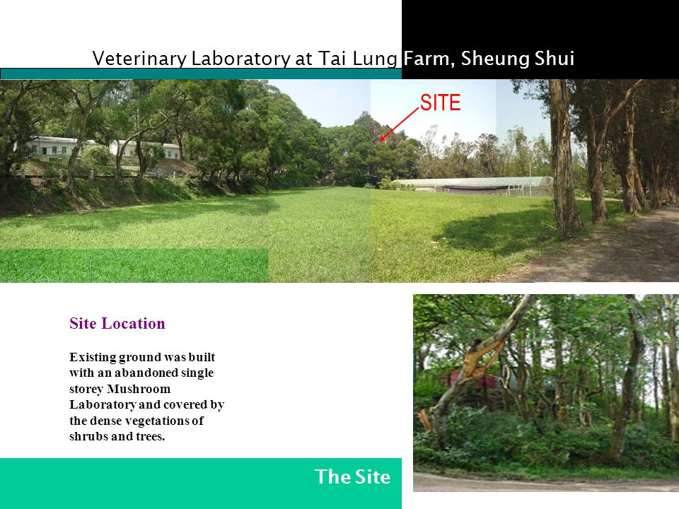 Veterinary Laboratory at Tai Lung Farm, Sheung Shui SITE Existing ground was built with an abandoned single storey Mushroom Laboratory and covered by