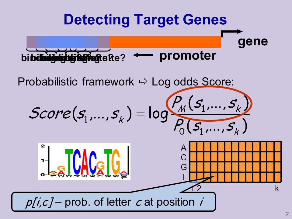 2 Detecting Target Genes promoter binding site? gene binding site? Probabilistic framework Log odds Score: ACGTACGT 1 2 k p[i,c] – prob. of letter c a