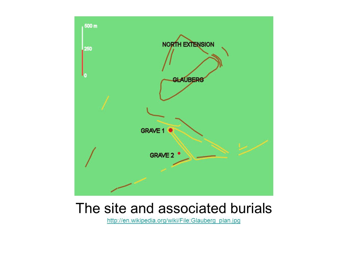 The site and associated burials http://en.wikipedia.org/wiki/File:Glauberg_plan.jpg