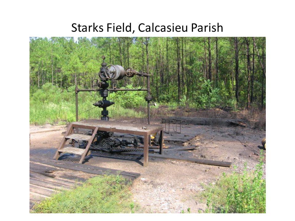 Starks Field, Calcasieu Parish