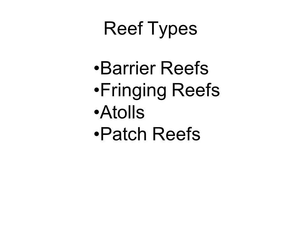 Reef Types Barrier Reefs Fringing Reefs Atolls Patch Reefs