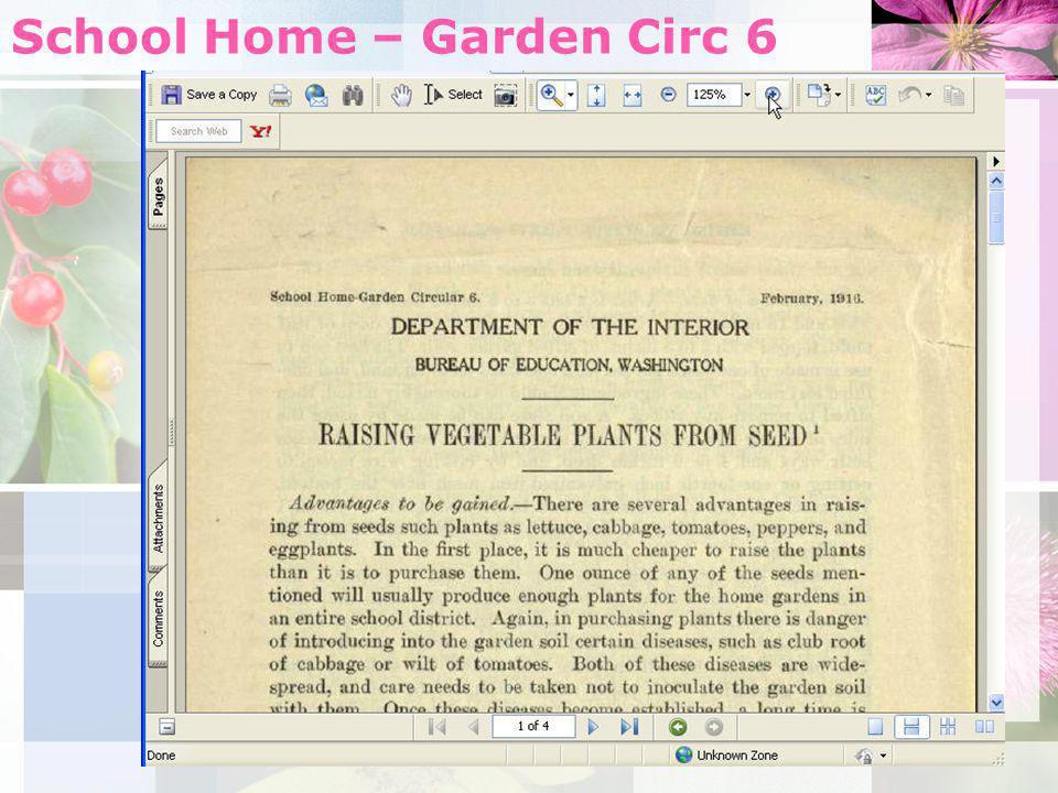 School Home – Garden Circ 6