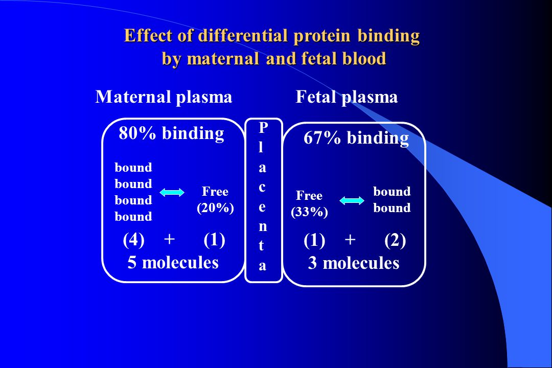 Intervillous space Cm Uterine artery Umbilical vein Umbilical artery Uterine vein Maternal Shunt Fetal Shunt Maternal Cm = UtA conc free drug Fetal Cf