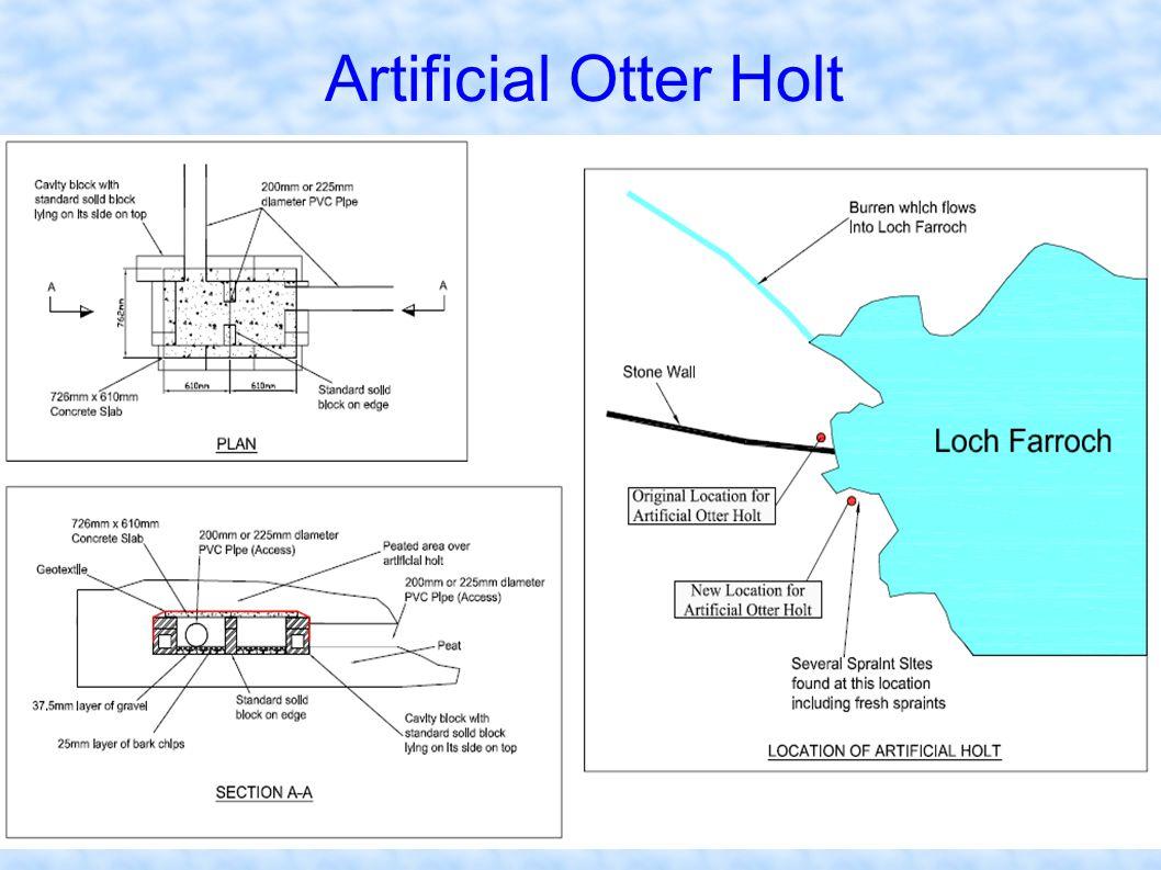 Artificial Otter Holt