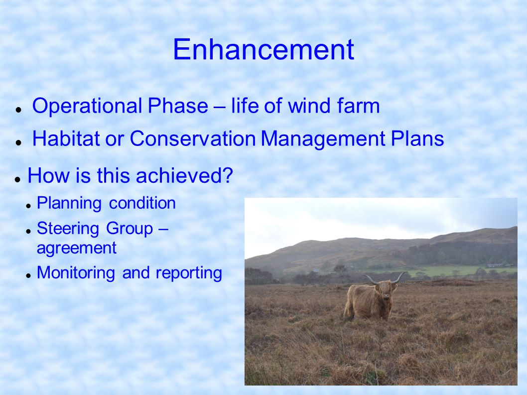 Enhancement Operational Phase – life of wind farm Habitat or Conservation Management Plans How is this achieved? Planning condition Steering Group – a
