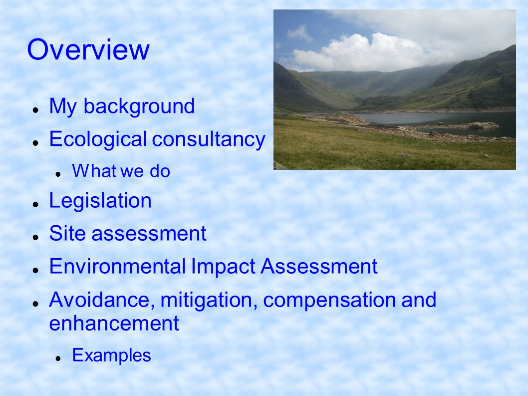 Overview My background Ecological consultancy What we do Legislation Site assessment Environmental Impact Assessment Avoidance, mitigation, compensati