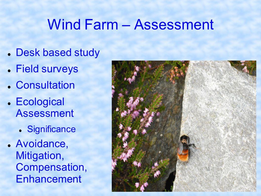 Wind Farm – Assessment Desk based study Field surveys Consultation Ecological Assessment Significance Avoidance, Mitigation, Compensation, Enhancement