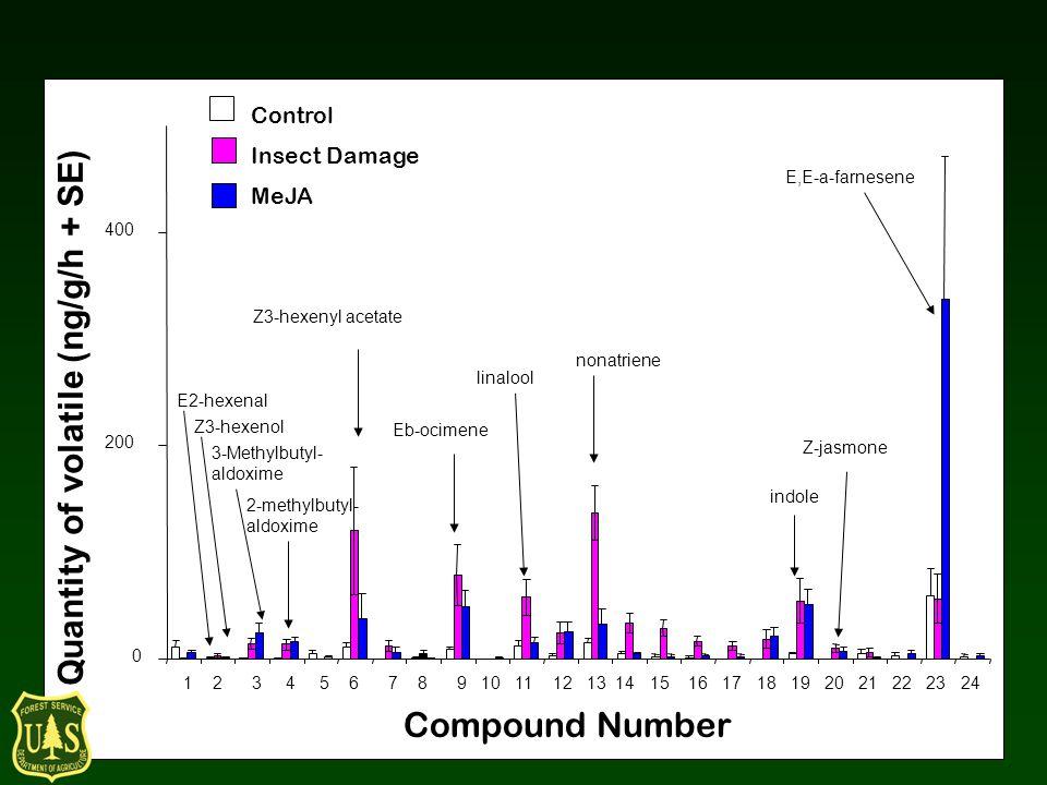 Quantity of volatile (ng/g/h + SE) Control Insect Damage MeJA 0 200 400 Compound Number 1 2 3 4 5 6 7 8 9 10 11 12 13 14 15 16 17 18 19 20 21 22 23 24 Z3-hexenyl acetate Eb-ocimene linalool nonatriene E2-hexenal Z3-hexenol 3-Methylbutyl- aldoxime 2-methylbutyl- aldoxime indole E,E-a-farnesene Z-jasmone