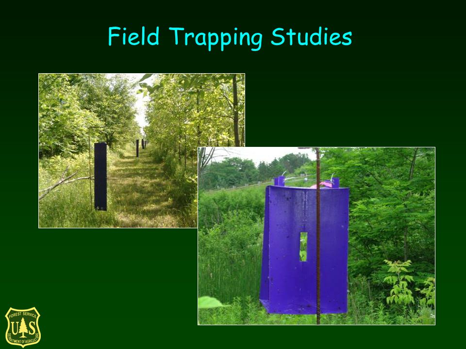 Field Trapping Studies