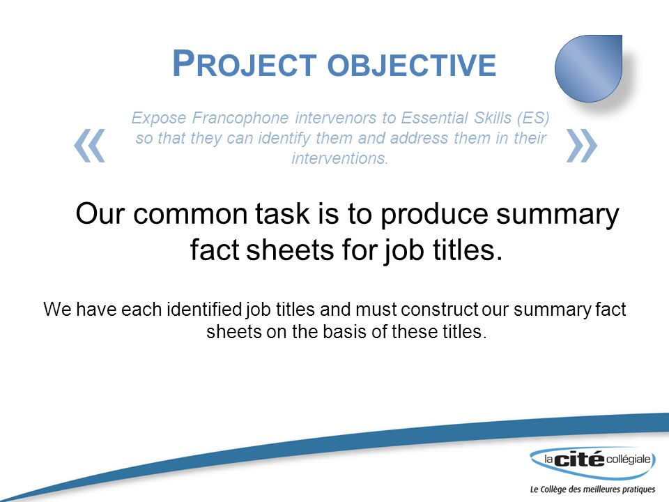 P ROJECT OBJECTIVE Our common task is to produce summary fact sheets for job titles.