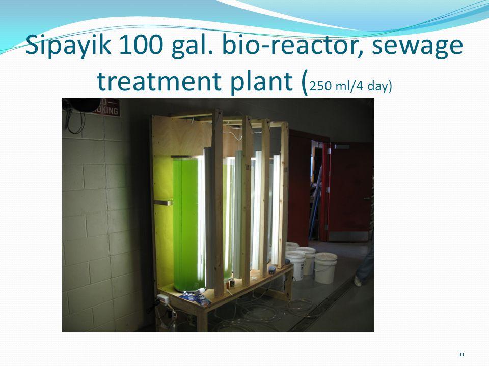 Sipayik 100 gal. bio-reactor, sewage treatment plant ( 250 ml/4 day) 11
