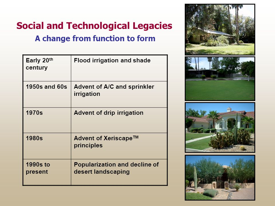 Early 20 th century Flood irrigation and shade 1950s and 60sAdvent of A/C and sprinkler irrigation 1970sAdvent of drip irrigation 1980sAdvent of Xeriscape TM principles 1990s to present Popularization and decline of desert landscaping Social and Technological Legacies A change from function to form