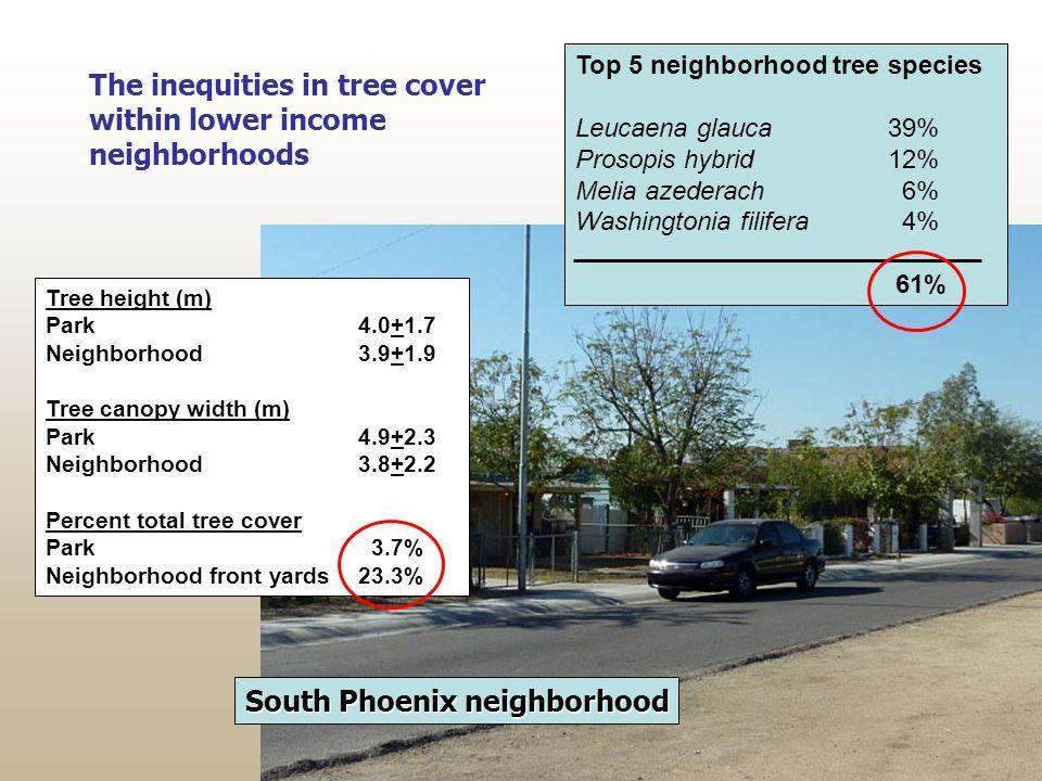 South Phoenix neighborhood The inequities in tree cover within lower income neighborhoods Tree height (m) Park4.0+1.7 Neighborhood3.9+1.9 Tree canopy width (m) Park4.9+2.3 Neighborhood3.8+2.2 Percent total tree cover Park 3.7% Neighborhood front yards23.3% Top 5 neighborhood tree species Leucaena glauca39% Prosopis hybrid12% Melia azederach 6% Washingtonia filifera 4% 61%