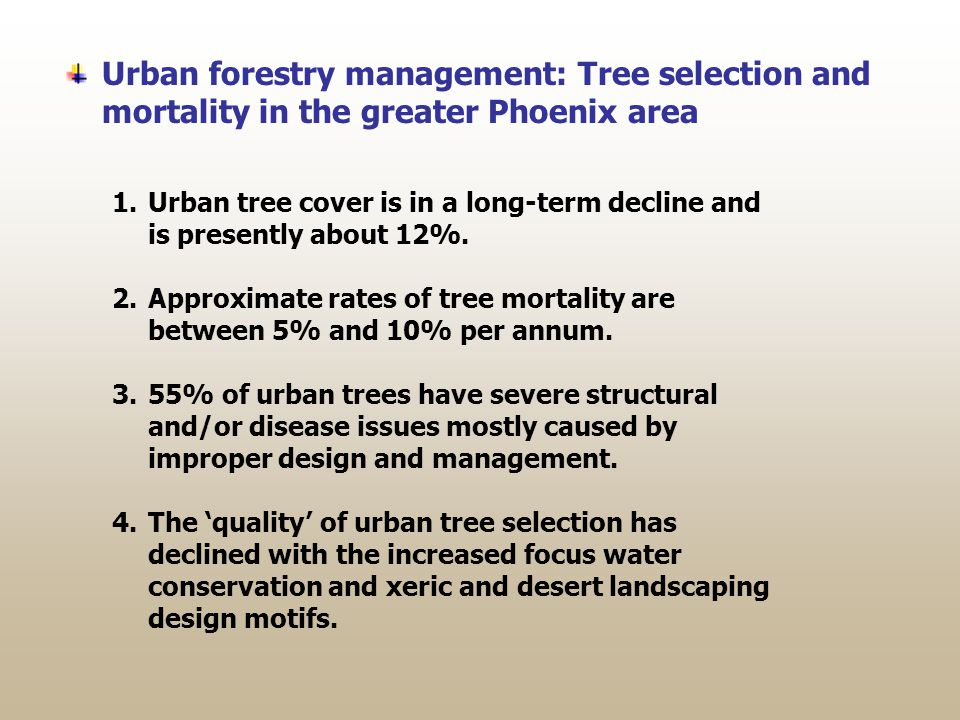 Urban forestry management: Tree selection and mortality in the greater Phoenix area 1.Urban tree cover is in a long-term decline and is presently about 12%.