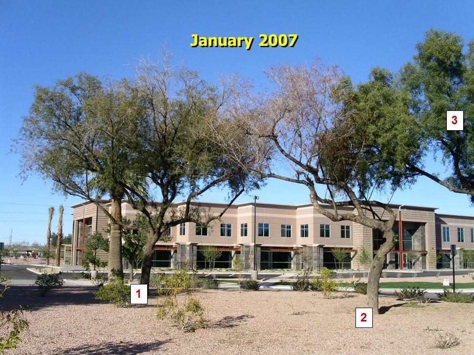 1 2 3 January 2007