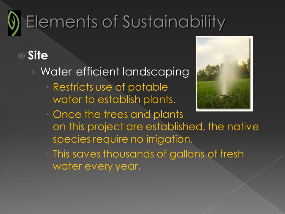 Site Water efficient landscaping Restricts use of potable water to establish plants.