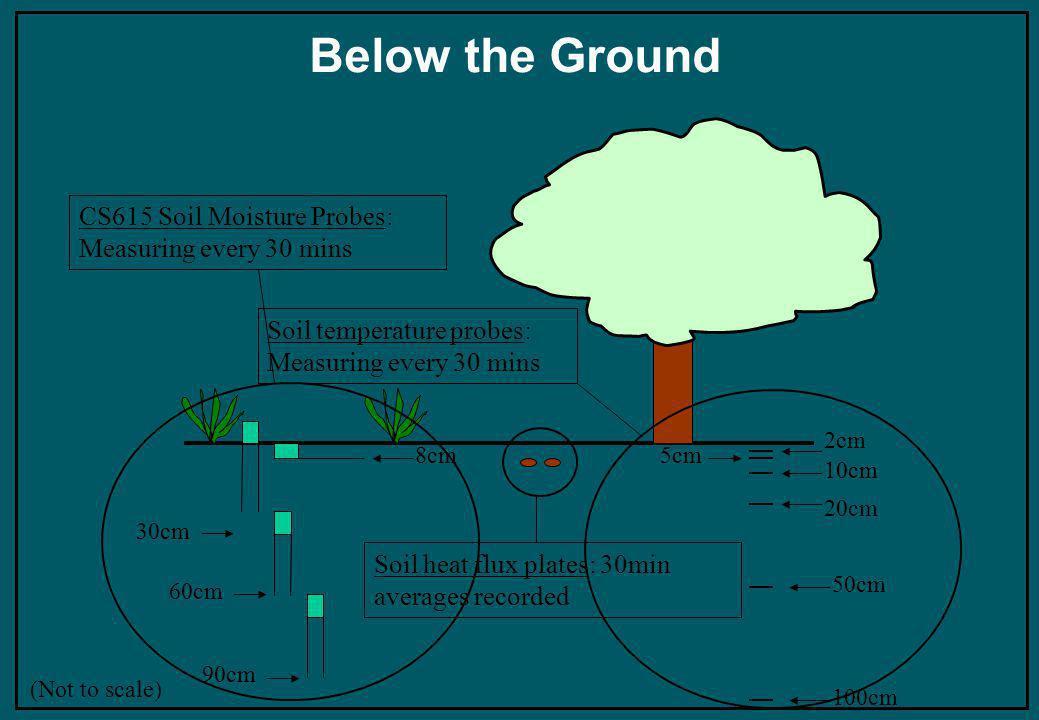 Below the Ground 30cm 60cm 90cm 8cm (Not to scale) CS615 Soil Moisture Probes: Measuring every 30 mins Soil heat flux plates: 30min averages recorded 5cm 10cm 2cm 20cm 50cm 100cm Soil temperature probes: Measuring every 30 mins