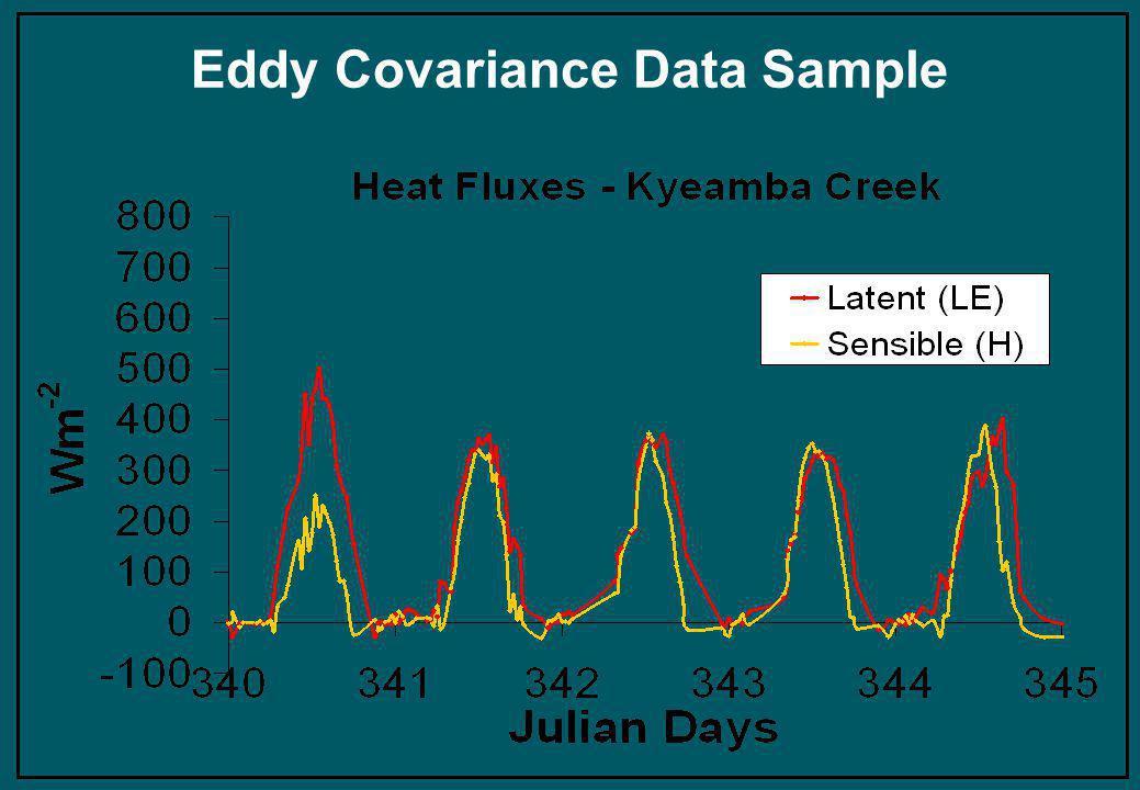 Eddy Covariance Data Sample