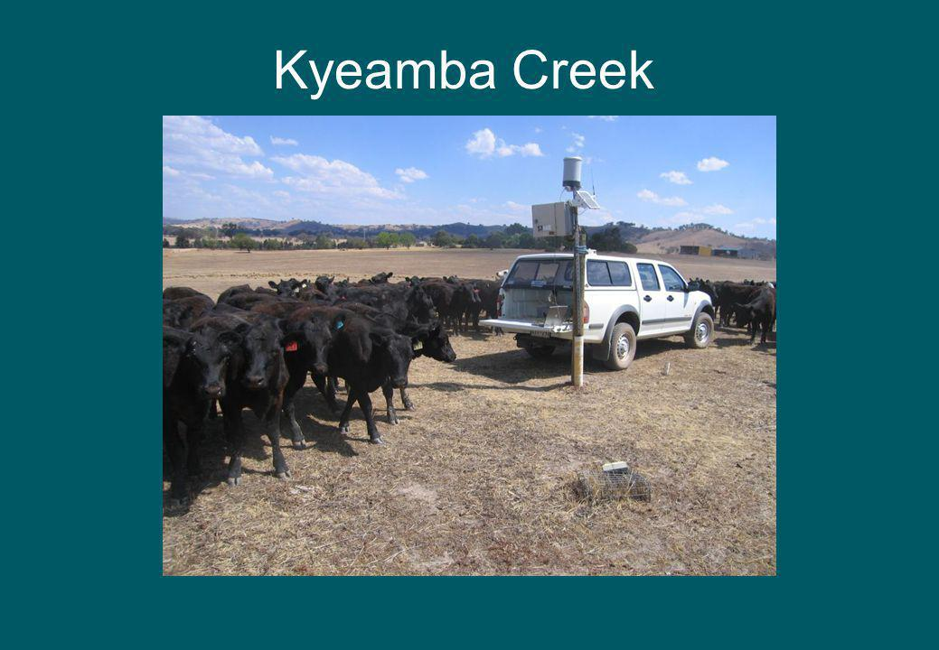 Kyeamba Creek